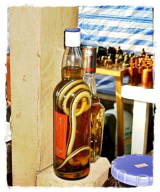 thai snake in a whisky bottle
